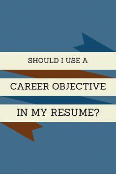 Professional resume career summary